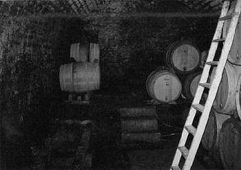 In the Cellar of Perrot-Mignot