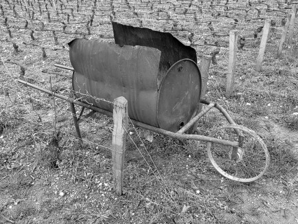 Wheel barrow to Burn the Cut off Wood from the Vines in
